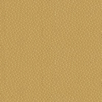 Abbey Shea Cycle Jacquard Gold