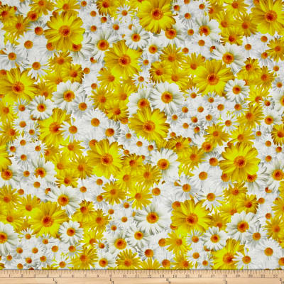Kanvas Oops A Daisy Field of Daisies Yellow/White