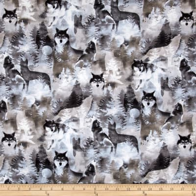 Kanvas Into the Woods II Silver Wolf Gray