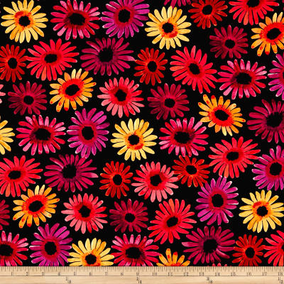 Kanvas Sunburst Daisy Burst Black