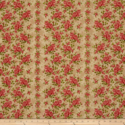 Homestead WideWide Climbing Rose Cream