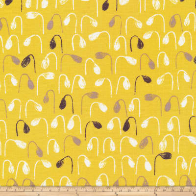 Cloud9 Organic Sow & Sew Sprouts Gray/Citron