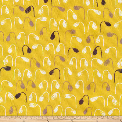 Cloud 9 Organics Sow & Sew Sprouts Canvas Gray/Citron