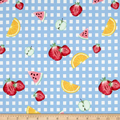 Double Brushed Jersey Knit Gingham Fruit Party Sky Blue