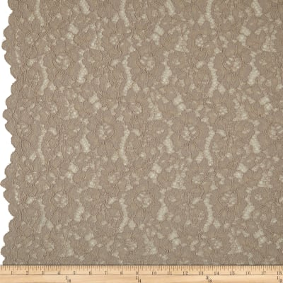 Corded Floral Lace Champagne
