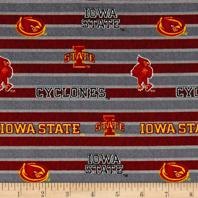 NCAA Iowa State Polo Stripe Allover Red