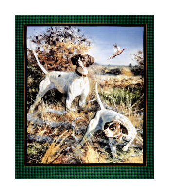 "Springs Creative Wild Wings Point North Wall 36"" Panel Multi"