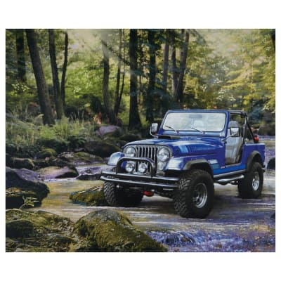 Jeep In The Wild Blue
