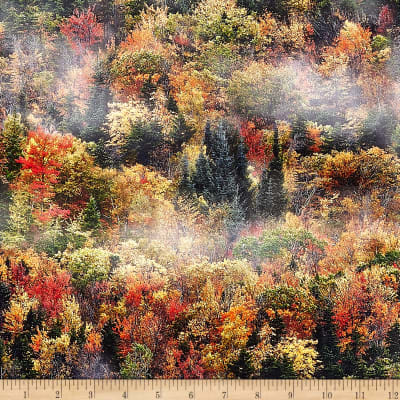 Hoffman Digital Call Of The Wild Fall Forest Autumn