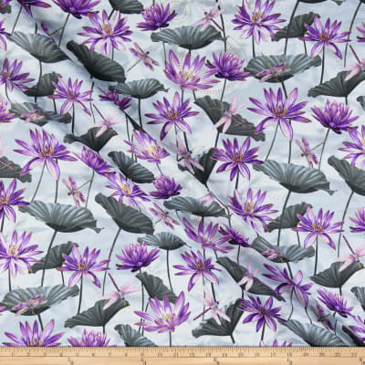 Kanvas Dragonfly Dance Waterlily Pool Gray/Purple