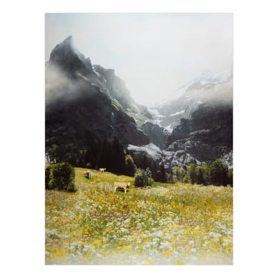 "Hoffman Digital Call Of The Wild 33"" Swiss Cow Panel Wild Flower"