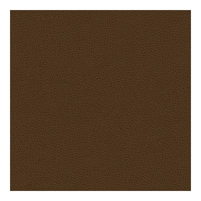 Kravet Contract Faux Leather Bess 6