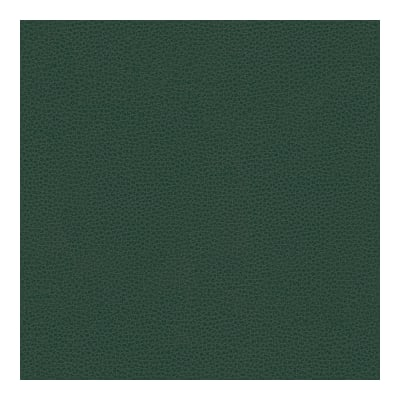 Kravet Contract Faux Leather Bess 5