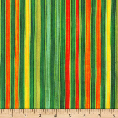 Kaufman Synchronicity Bold Stripes Nature
