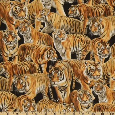 Living Wonders Tigers Black/Orange