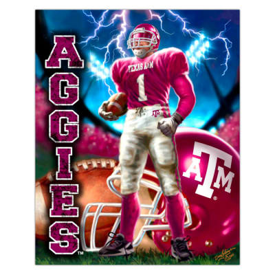 Collegiate Fleece Panel Texas A&M