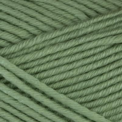 Martha Stewart Extra Soft Wool Blend Yarn (556) Green Eucalyptus