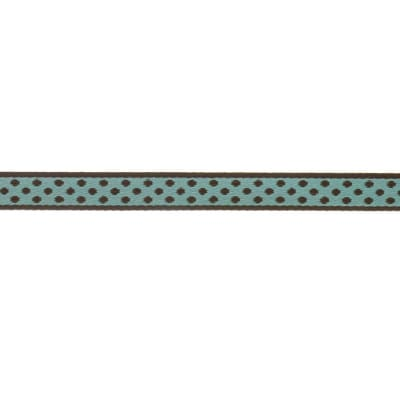 7/16'' Ribbon Polka Dot Aqua/Brown