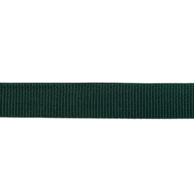 Polyester Webbing 1'' Forest