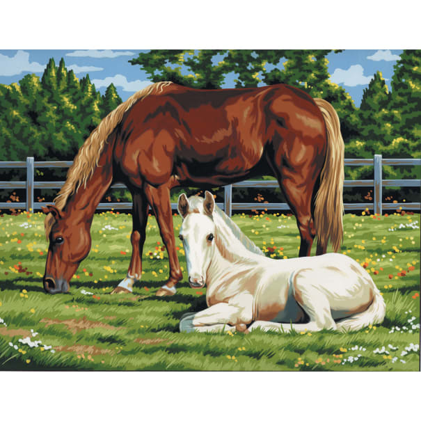 """Paint By Number Kit Artist Canvas Series 11""""X14""""-Horses In Field"""
