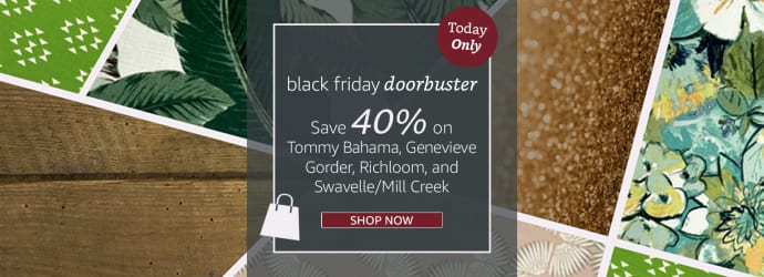 Black Friday Doorbuster 1