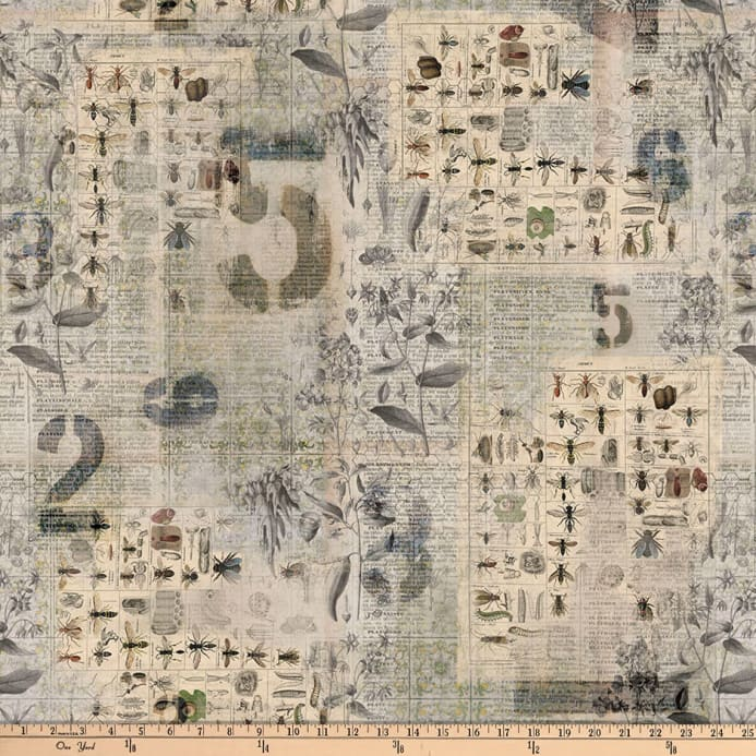 Tim holtz eclectic elements wallflower entomology multi discount zoom tim holtz eclectic elements wallflower entomology multi gumiabroncs Choice Image