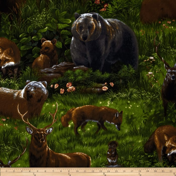 Nature Studies Forest Animals Meadow