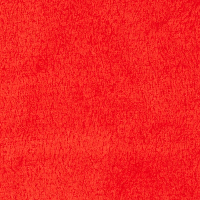 Plush Coral Fleece Solid Ruby