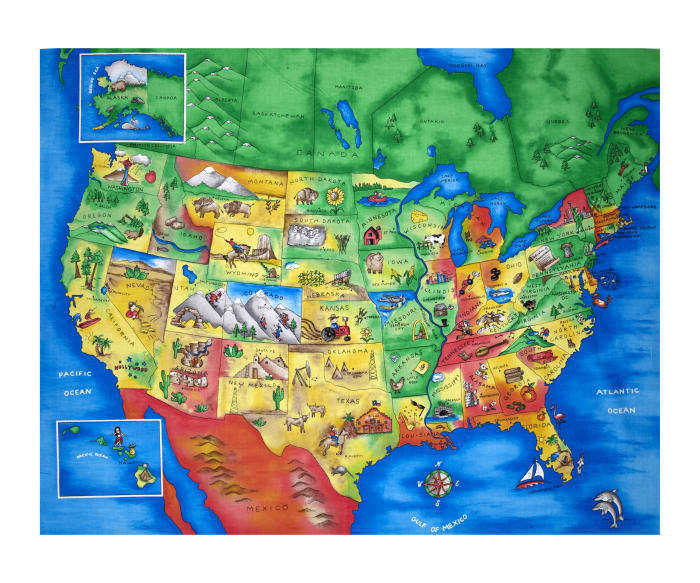 """Map of the United States 35.5"""" Panel Multi"""