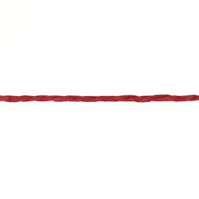 1/16'' Paper Twine Red