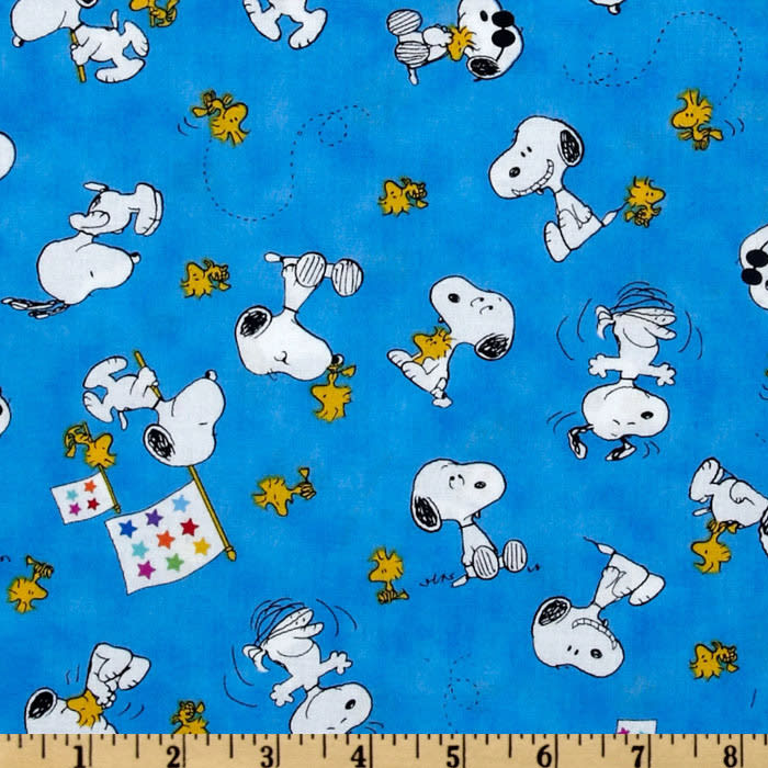 Peanuts-Project Linus Snoopy & Woodstock Toss Blue