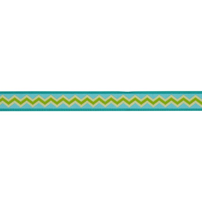 5/8'' Anna Maria Horner Ribbon Meander Lime/Water